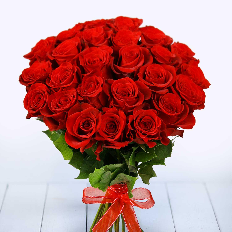 25 роз Фридом. Купить цветы.